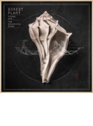 Lullaby And... The Ceaseless Roar【CD】