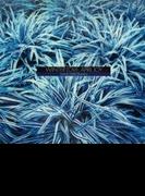 Winter Love, April Joy (Ltd)(Rmt)【CD】