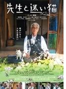 先生と迷い猫 DVD 通常版【DVD】