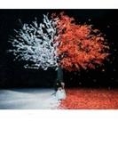 茜さす / everlasting snow 【通常盤】【CDマキシ】