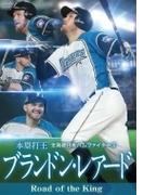 (仮)北海道日本ハムファイターズ ブランドン・レアード 本塁打王 I LOVE SUSHI!