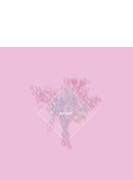 orion 【オリオン盤(初回限定盤A)】(CD+クリアシート+ハードカバー仕様)