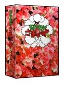 モヤモヤさまぁ~ず2 DVD-BOX(VOL.28、VOL.29)【DVD】 2枚組