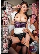 お色気P●A会長と悪ガキ生徒会 小早川怜子【DVD】