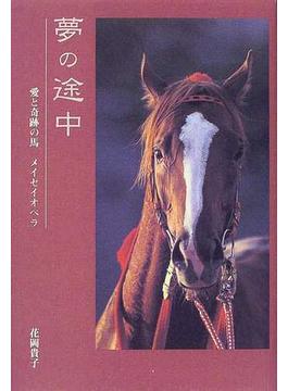 夢の途中 愛と奇跡の馬メイセイオペラ