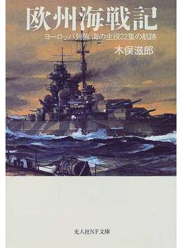 欧州海戦記 1 ヨーロッパ列強海の主役22隻の航跡(光人社NF文庫)