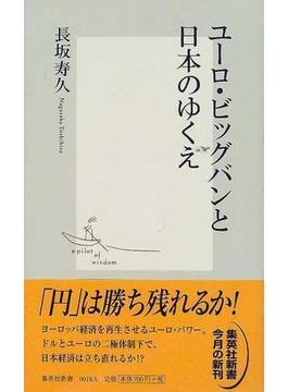 ユーロ・ビッグバンと日本のゆくえ(集英社新書)