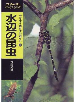水辺の昆虫
