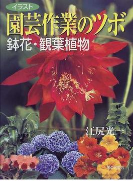 園芸作業のツボ鉢花・観葉植物 イラスト