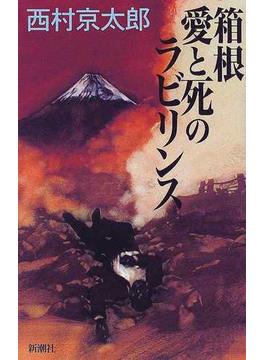 箱根愛と死のラビリンス