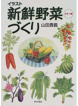 イラスト新鮮野菜づくり カラー版