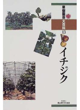 果樹園芸大百科 13 イチジク
