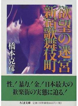 欲望の迷宮新宿歌舞伎町(ちくま文庫)
