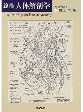 線描人体解剖学
