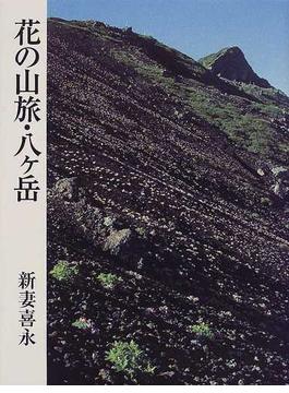 花の山旅・八ケ岳