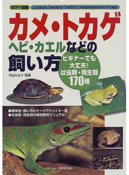 カメ・トカゲ・ヘビ・カエルなどの飼い方 カラー図鑑 ビギナーでも大丈夫!は虫類・両生類170種