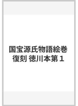 国宝源氏物語絵巻 復刻 徳川本第1