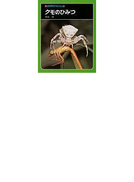 クモのひみつ