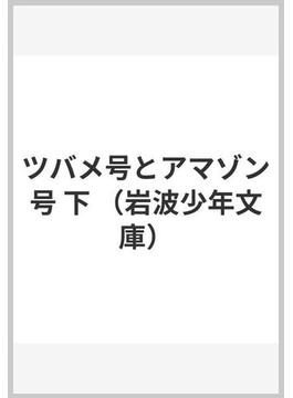 ツバメ号とアマゾン号 下(岩波少年文庫)