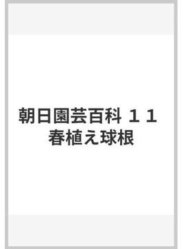 朝日園芸百科 11 春植え球根