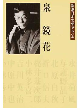 新潮日本文学アルバム 22 泉鏡花