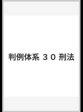 判例体系 30 刑法