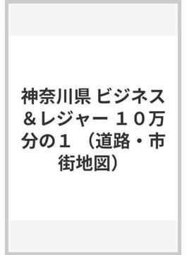 神奈川県 ビジネス&レジャー 10万分の1