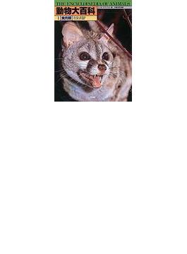 動物大百科 1 食肉類