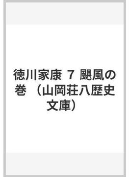 徳川家康 7 颶風の巻(山岡荘八歴史文庫)