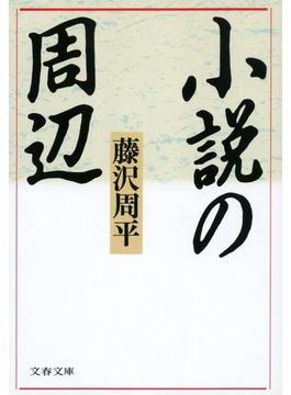 小説の周辺(文春文庫)