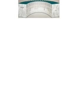 世界美術大全集 西洋編 第10巻 ゴシック 2