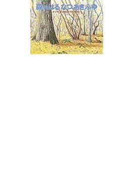 森のはるなつあきふゆ オシギッパのもりでみつけた