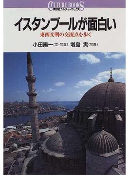 イスタンブールが面白い 東西文明の交流点を歩く