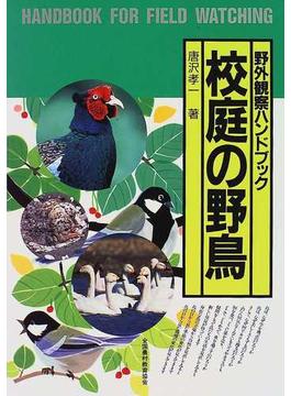 校庭の野鳥