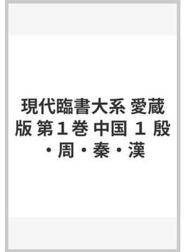 現代臨書大系 愛蔵版 第1巻 中国 1 殷・周・秦・漢