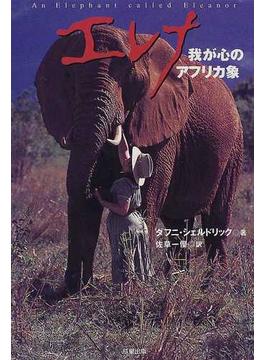 エレナ 我が心のアフリカ象
