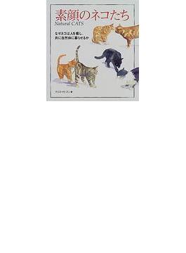素顔のネコたち