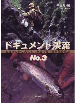 ドキュメント渓流 野性派の釣り人におくる現地発・最新遡行記録 No.3
