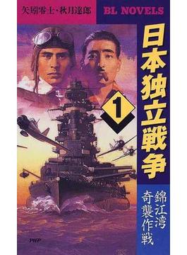 日本独立戦争 1 錦江湾奇襲作戦