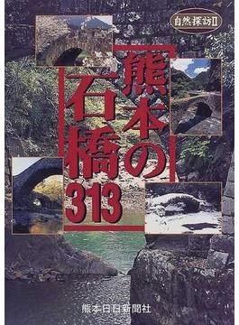 熊本の石橋313