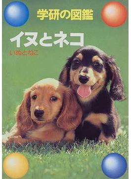 イヌとネコ