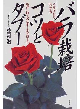イラストでわかるバラ栽培コツとタブー