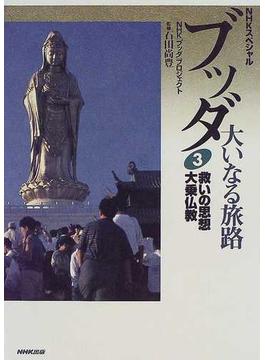 ブッダ大いなる旅路 3 救いの思想大乗仏教(NHKスペシャル)