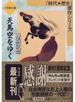 天馬空をゆく(小学館文庫)