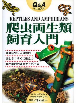 爬虫両生類飼育入門 Q&Aマニュアル