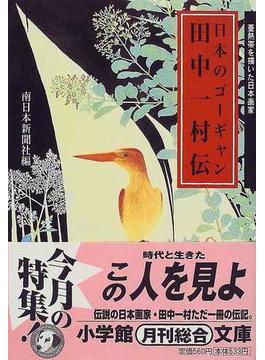 日本のゴーギャン田中一村伝(小学館文庫)
