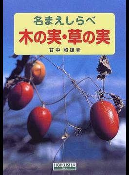 木の実・草の実