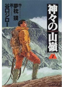 神々の山嶺 1 (BUSINESS JUMP愛蔵版)