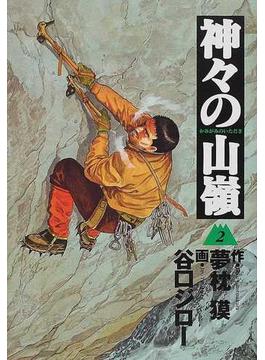 神々の山嶺 2 (BUSINESS JUMP愛蔵版)