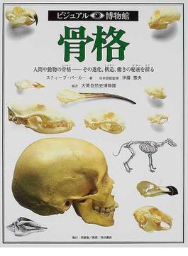 ビジュアル博物館 第3巻 骨格